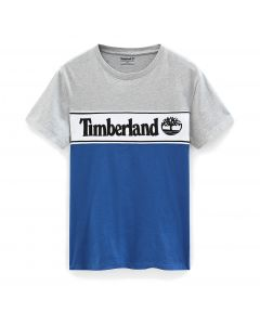 Cut and Sew Linear Logo Tee Grey and Blue